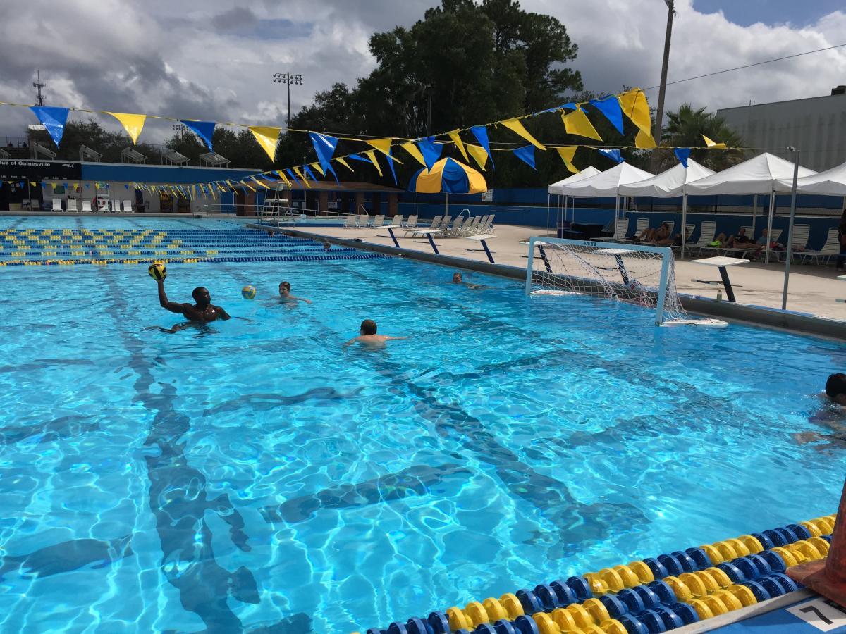 September 27th 2014 Uf Clinic Ne Pool Gator Water Polo