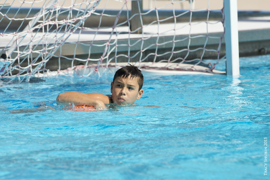 February 7th 2015 Ycf Vs Gwp Ne Pool Gator Water Polo