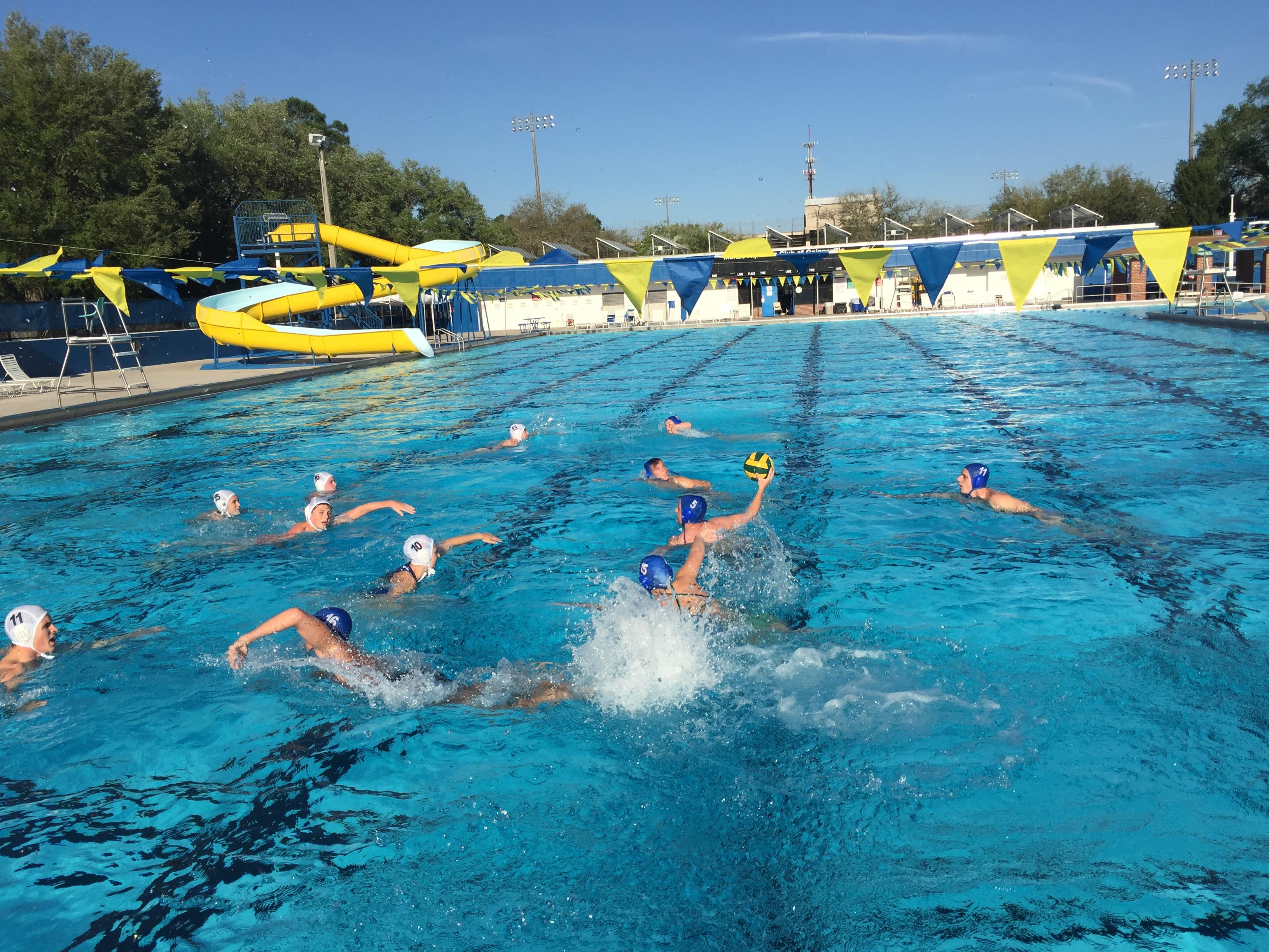 Welcome Back To Ne Pool Gator Water Polo